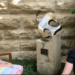 Joey Watson interviews Pastor Terra!